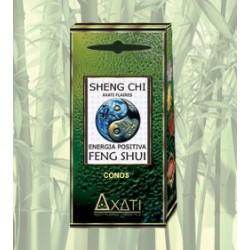 Incienso Cono Feng Shui Sheng Chi